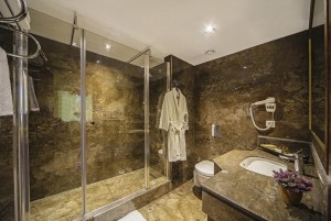 Gallery | Golden Park Hotel  13